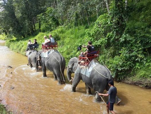 Nature Reserve Khao Sok and the lake Cheo Lan Thailand Banita Tour Asia