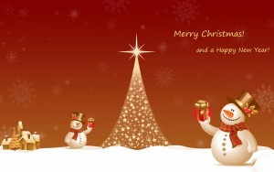 Marry Christmas and Happy New Year from Banita Tour