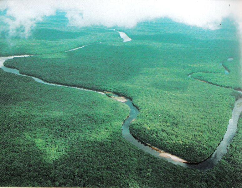 Orinoco River Travel along th...