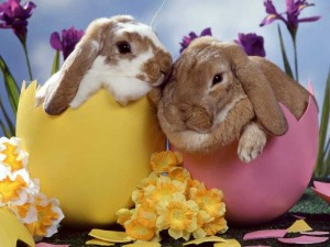 i-wish-you-a-happy-easter