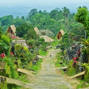 Balinese villages Bali banita Tour