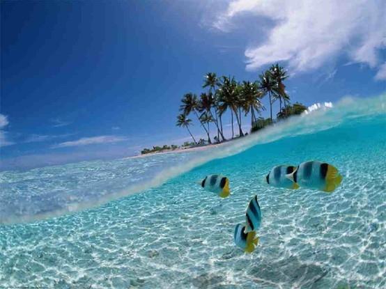 Bali Beach Relaxing Resort Diving Fun Banita Tour