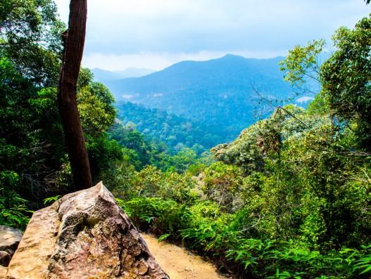malaysia_taman_negara_mountain_view_by_drakeson