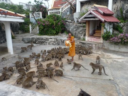 Monkey Cave Temple Thailand Asia Kwai Banita Tour