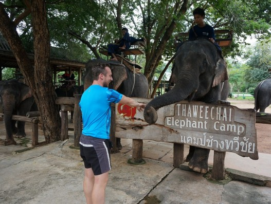 Thai Elephant Farm Banita Tour Asia Travel Tourism Excursions