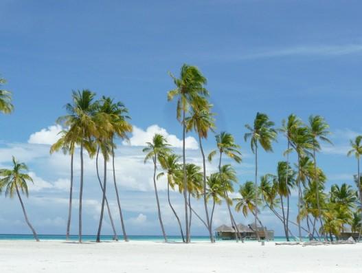 maldives, island paradise, beach, holiday, lankanfushi , Banita tour